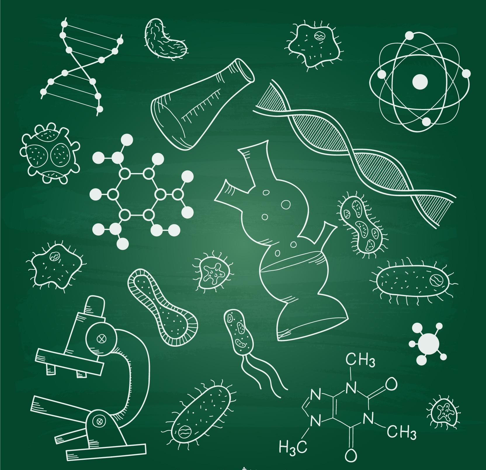 Ciencias de la vida LEM2B
